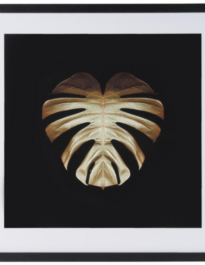 Gold Deco Monstera by Alyson Fennell 630x630 £140