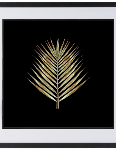 Gold Deco Palm by Alyson Fennell 630x630 £140